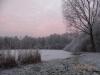 Winter Schollebos