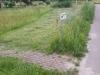Maaien-Vlindertuin-scaled